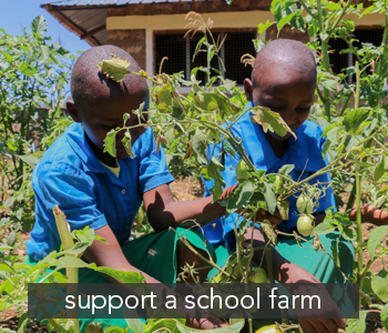 supportschoolfarm1